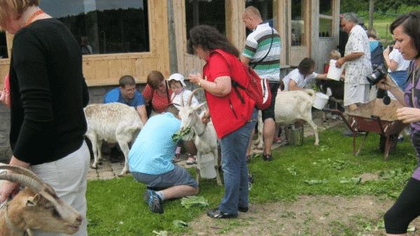 Goście w Koziej Łące