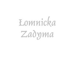 Łomnicka Zadyma | Sery Łomnickie
